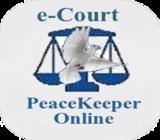 E-court Q&A